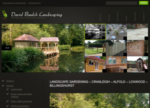 The desktop version of the David Baulch Landscaping website
